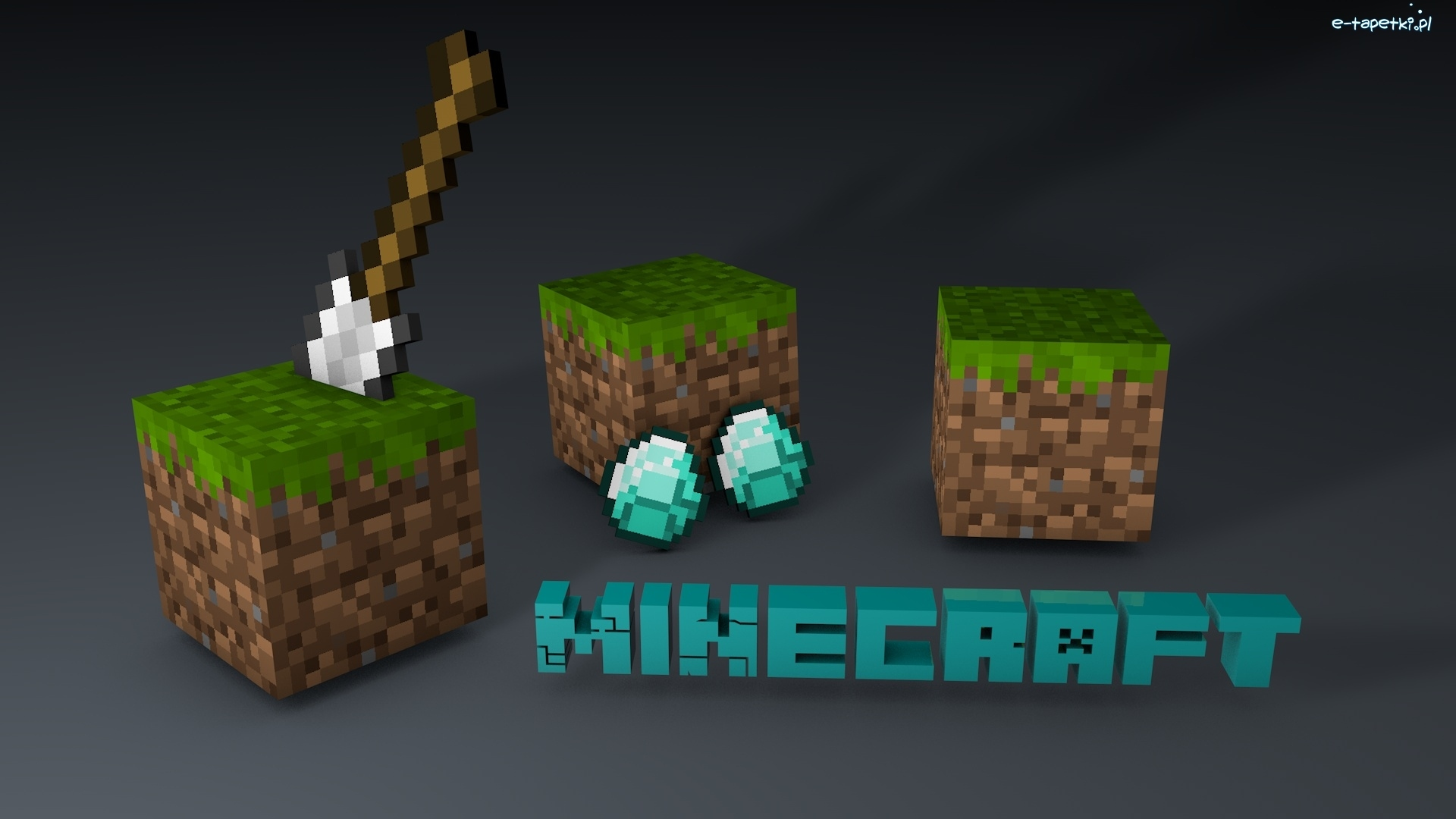 219345 Minecraft