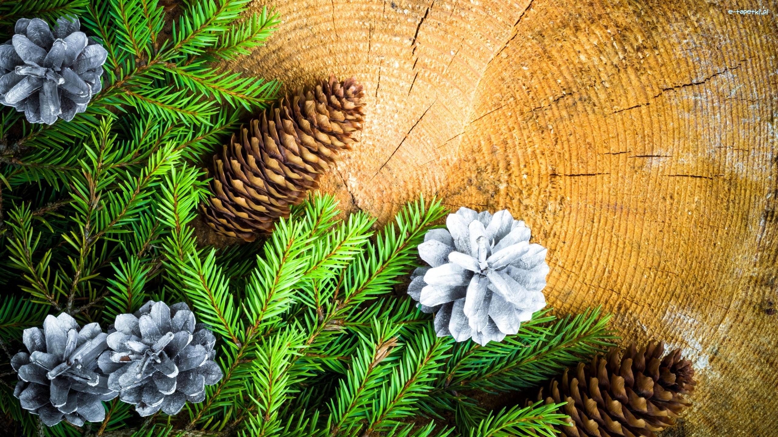 Dekoracja świąteczne Gałązki Szyszki