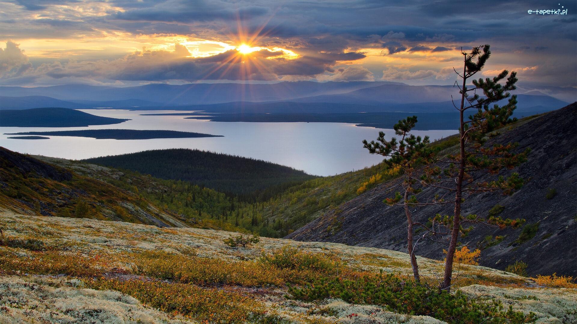 Murmanski